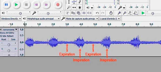Analyse audio du ronronnement