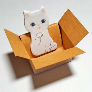 Petit chat dans une boite en carton