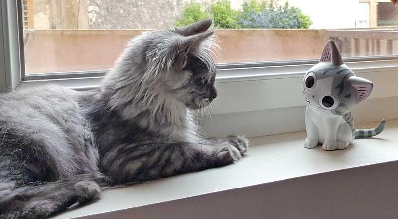 La face cachée de «Chi, une vie de chat»