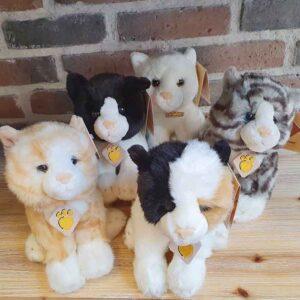 Petite peluche chaton (5 modèles)