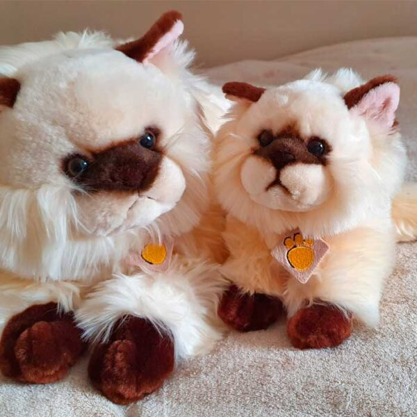 Peluche maman chat et chaton siamois