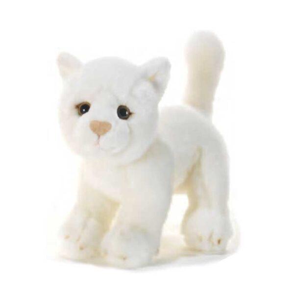 Petite peluche chat blanc