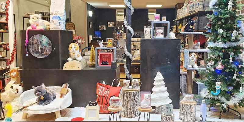 Cadeaux de Noël à Dunkerque, animalerie spécialisée chats
