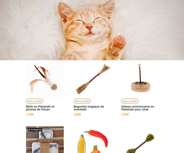 Kdo Chats, jouets bio aux herbes à chat, matatabi et Cataire