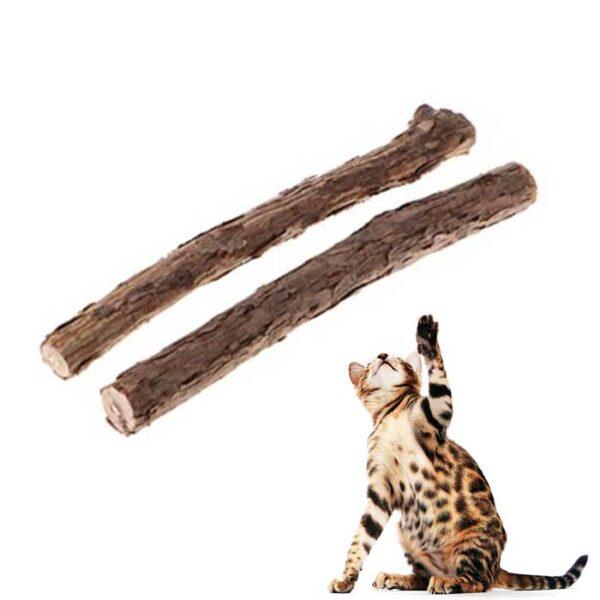 Bâton de Matatabi pour chat à machouiller et à l'odeur stimulante