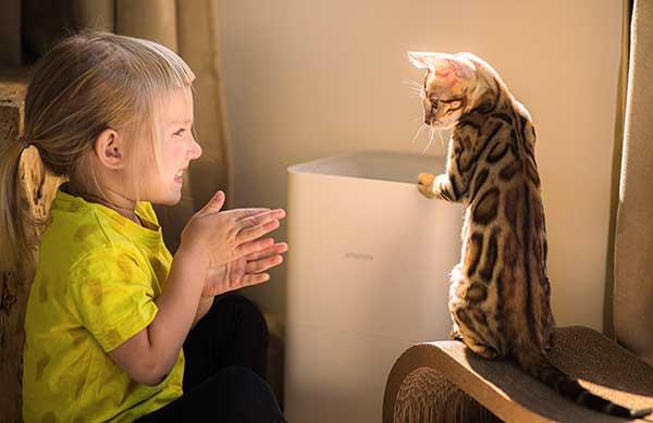 Le chat Bengal est-il dangeureux pour les enfants ?